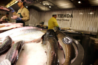 Fall in Norwegian seafood export value despite growth in volume for some species