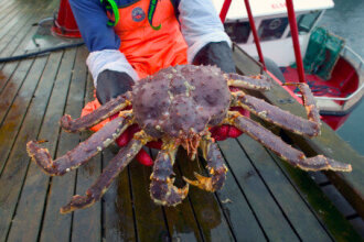 The third best month ever for seafood exports